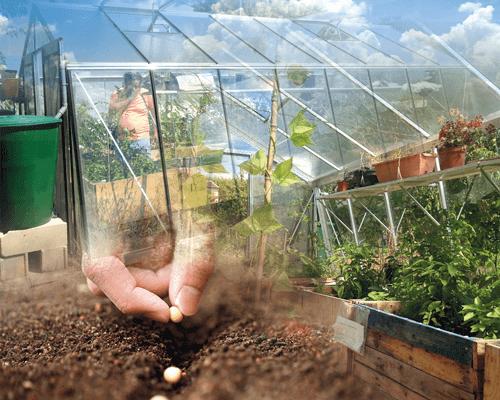 Serre de jardin bioclimatique