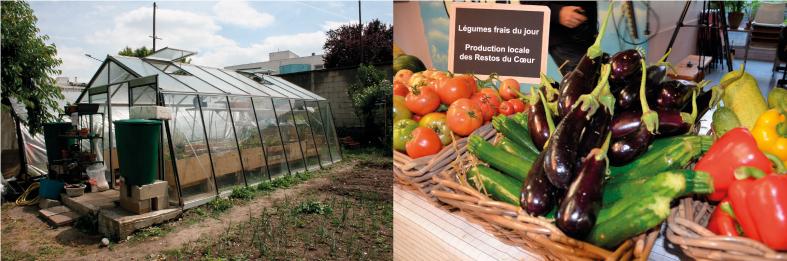 Serre bioclimatique installée au jardin du Cœur à la ferme Moultoux à Montreuil.