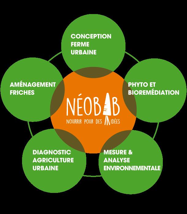 Accompagner la mutation sociale, environnementale et économique des villes, associations et entreprises