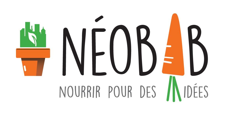 Actualité de Neobab