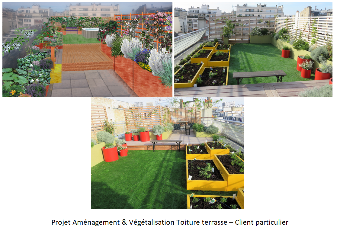 Projet d'aménagement et de végétalisation d'une toiture terrasse chez un client particulier par Neobab
