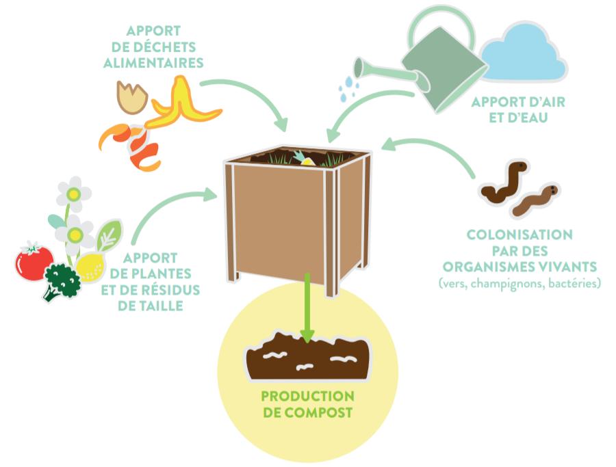 Processus de compostage