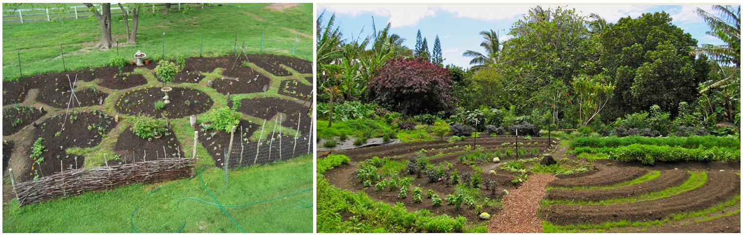 Jardins Mandala dans la conception et l'aménagement de projets en permaculture